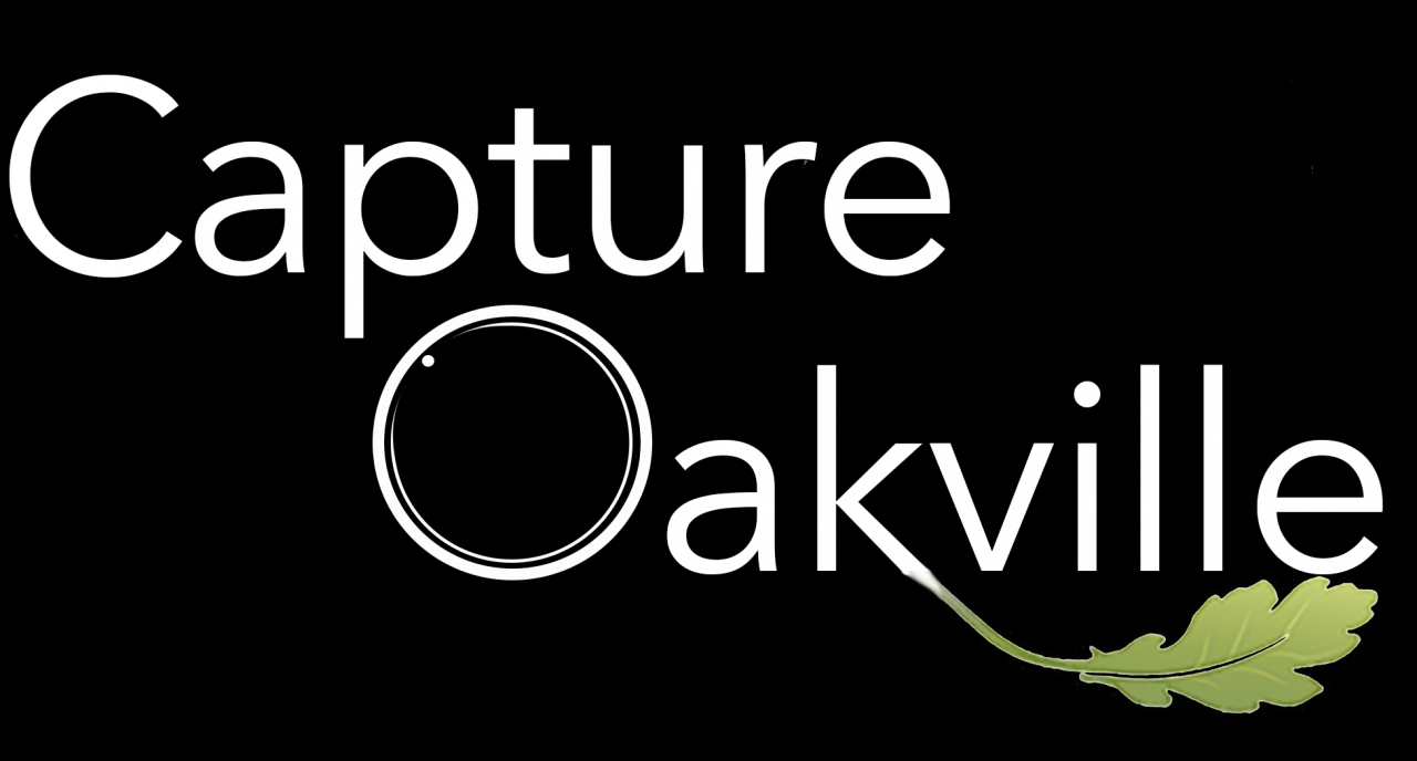 Capture Oakville 2018 Photo Exhibition & Awards Gala