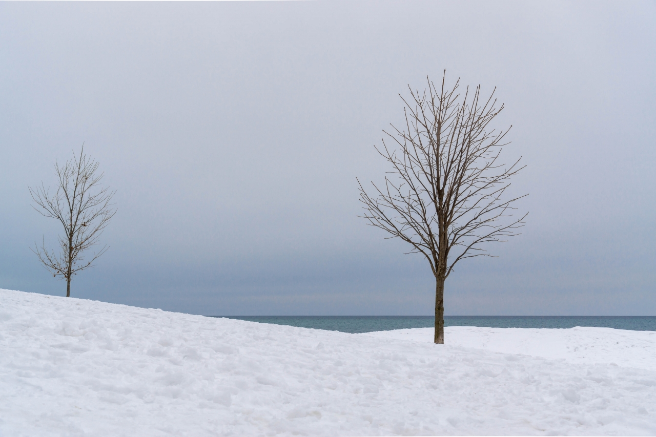 A Quiet Moment by Monica Dingle - Runner Up - Minimalistic Winter Landscape 2019 Spring Challenge